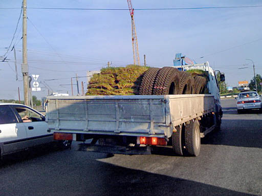 Трава и колёса